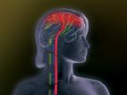 Therapie der schmerzhaften diabetischen Polyneuropathie: Den Schmerz wirksam lindern – den Alltag erleichtern