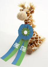 """""""Fine Star"""" soll Kindern das Leben mit dem Diabetes erleichtern"""