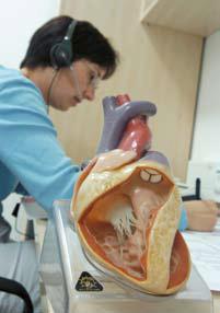 Telefonschwester: neues Betreuungskonzept bei Herzinsuffizienz