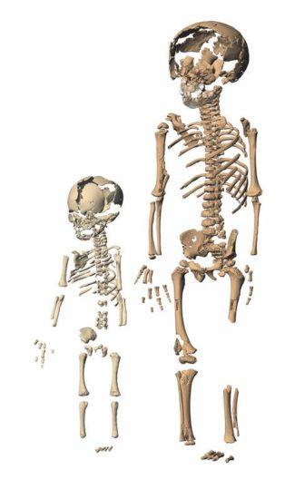Geburt war schon bei Neandertalern schwierig