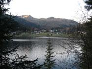 Spezifische Immuntherapie (Hyposensibilisierung) unter Allergenfreiheit im Hochgebirge