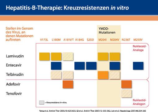 Viread® – effektive Langzeitstrategie mit ausgezeichnetem Resistenz- und Sicherheitsprofil