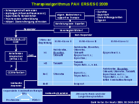 Prof. Dr. med. Ralf Ewert: Therapieziele erreichen – praktisches Vorgehen bei PAH-Patienten entsprechend den aktuellen Leitlinien
