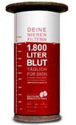 """""""Die Rote Säule"""" – eine Kampagne der Deutschen Nierenstiftung zur Prävention chronischer Nierenkrankheiten"""