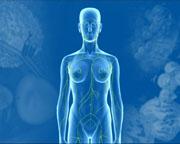 Rituximab-Erhaltungstherapie beim Follikulären Lymphom in allen Therapielinien zugelassen