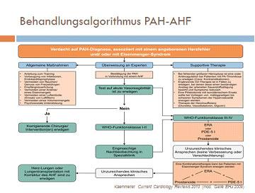 Dr. med. Mebus: PAH und Komplikation – Eisenmenger-Syndrom bei Kindern, Jugendlichen und Erwachsenen – Management von Patienten mit AHF und Eisenmenger-Syndrom