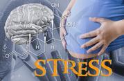 Nicht ohne Folgen: Stress vor der Geburt beeinflusst Altern und Krankheitsrisiko