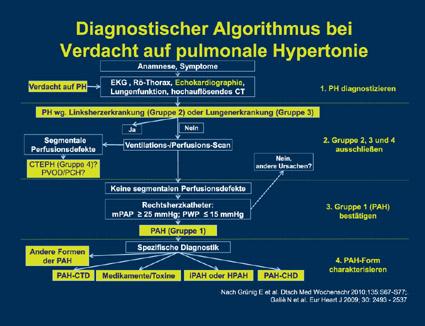 PD Dr. med. Christian Opitz, Berlin: Wie können wir die aktuellen Empfehlungen zur Echokardiographie bei PAH umsetzen?