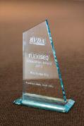 BVDA-Innovationspreis 2013: Flexiseq – Neues Gel gegen Arthroseschmerzen