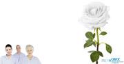12. Mai – International Nurses Day: Leistung beruflich Pflegender im Gesundheitssystem