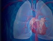 Pulmonale Hypertonie: Optimierung der Versorgungsnetzwerke für Patienten mit pulmonaler Hypertonie