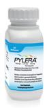 Helicobacter pylori nicht immer mit bestmöglicher Option therapiert