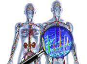 Diagnostik: Proteom-Analyse setzt neue Maßstäbe