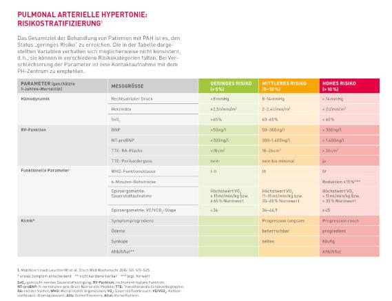 Therapie der pulmonal arteriellen Hypertonie (PAH): Kölner Konsensus-Konferenz plädiert für frühe Kombinationstherapie nach Risikostratifizierung