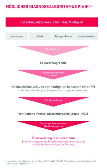 Pulmonal (arterielle) Hypertonie (P(A)H): Auffälligkeiten bei EKG und BNP/NT-proBNP bringen erste wichtige Hinweise