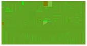 Biomimetisches Hydrogel mit photodynamischer antimikrobieller Wirkung: Licht an für keimfreie Wundauflagen