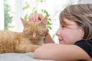Umarme-Deine-Katze – ohne Nebenwirkungen